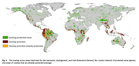 Global priorities for conservation across multiple