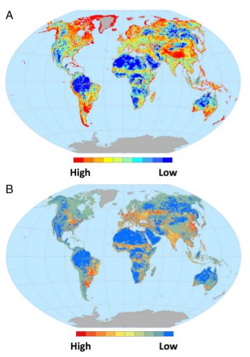 Quantification of Habitat Fragmentation Reveals Extinction Risk in Terrestrial Mammals
